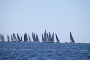 Zeilwedstrijden baai van Palma
