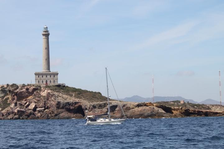 Pelikaan, Cabo de Palos - Mar Menor - Las Dunas