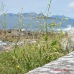 Baiona uitzicht op Cies eilanden