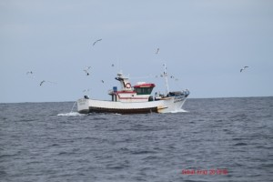 Kruisende visser bij Peniche