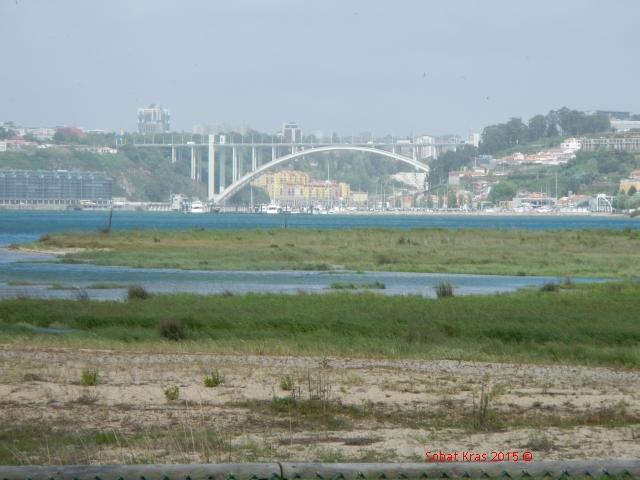 Douro estuarium